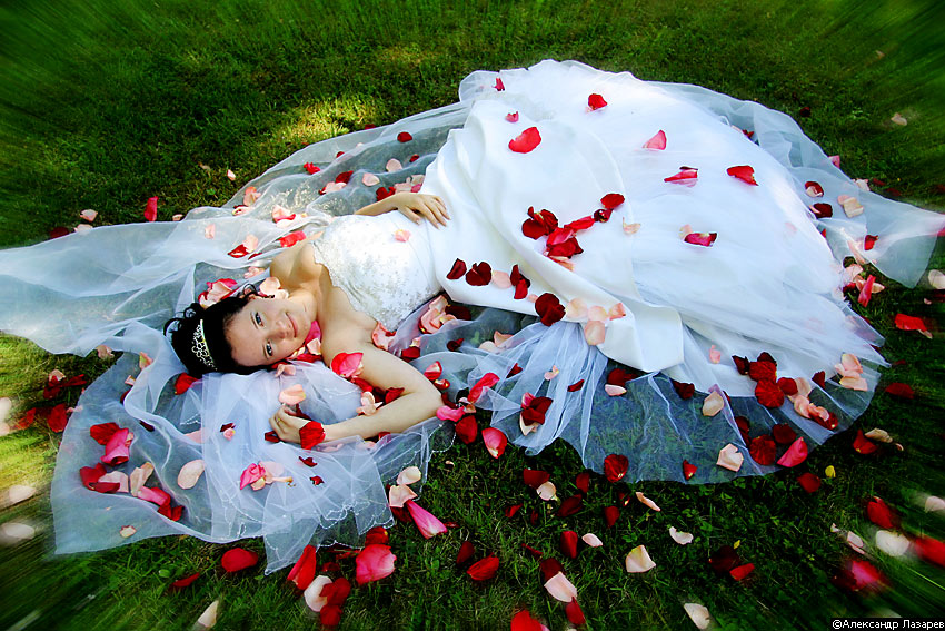 Как сделать свадебные лепестки из роз